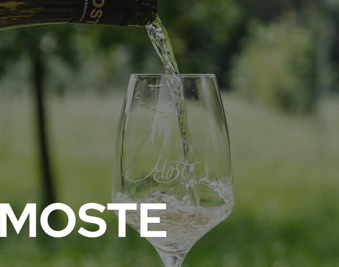 Hofkellerei Lackner Moste